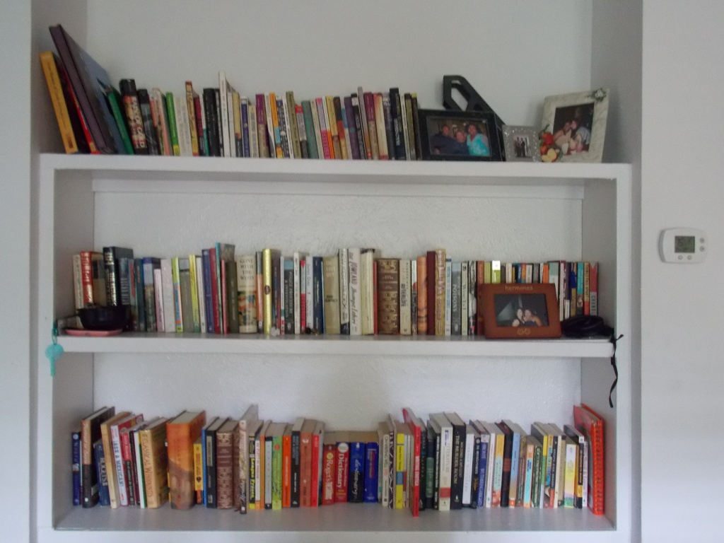 My lovely and full bookshelves.